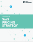 Developing Your SaaS Pricing Strategy - Cover